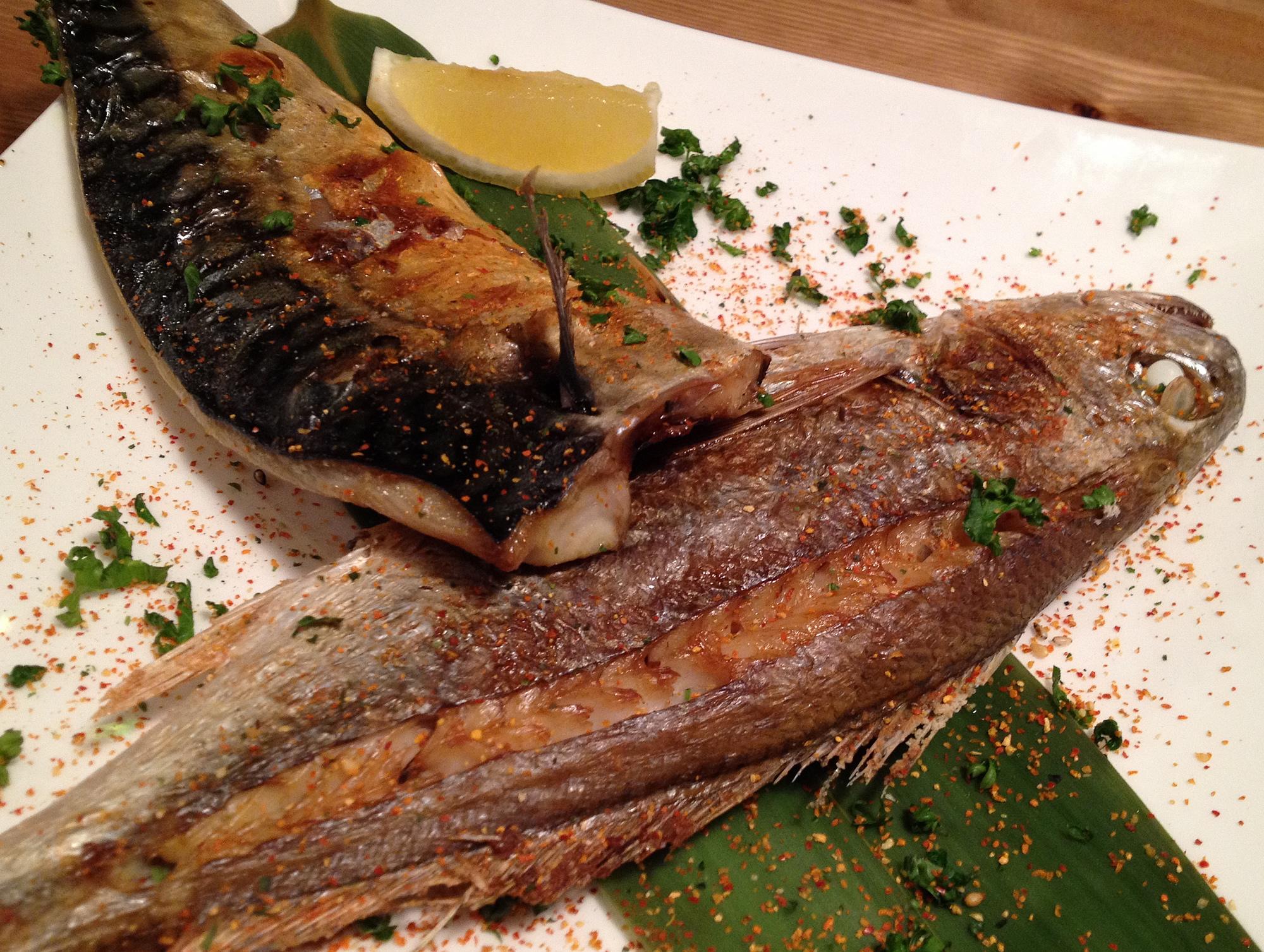 魚food UROKO