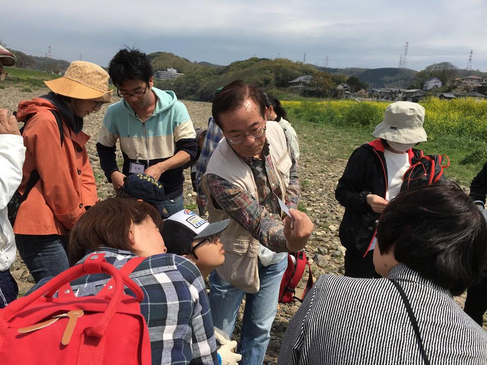 大和川で探してみよう キラリ光る石