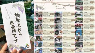 柏原ぶどう直売所マップ」2020年度版