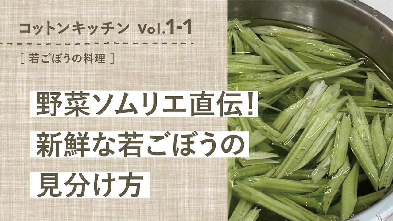 野菜ソムリエ直伝!新鮮な若ごぼうの見分け方