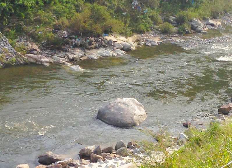 亀の瀬亀石