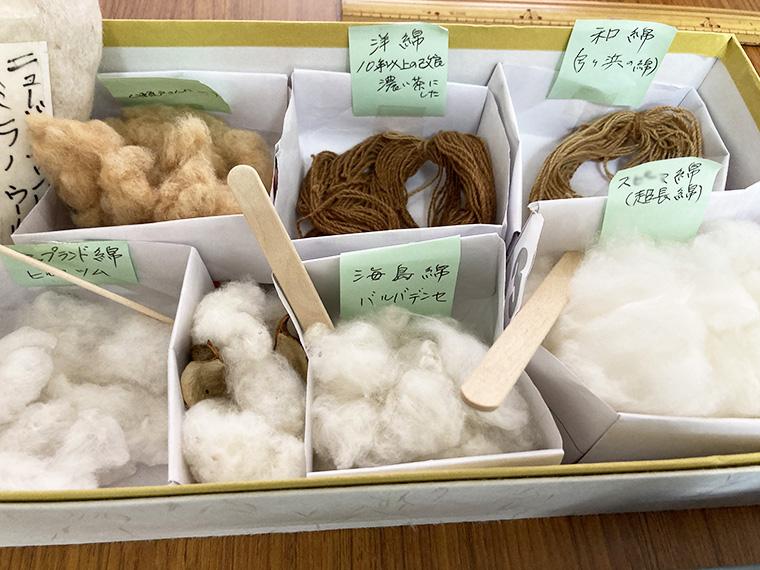 和綿と洋綿の違い